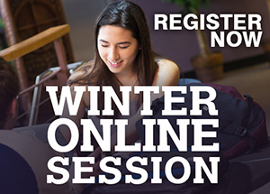 winter online session
