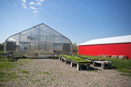 TC3 Farm barn and greenhouse