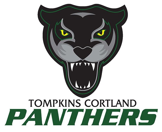 TC Panthers logo