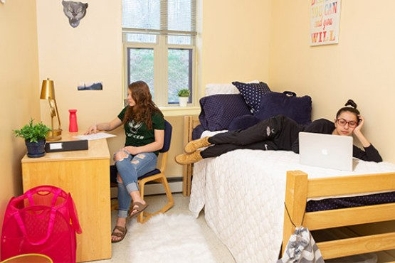 Students studying in campus dorm room